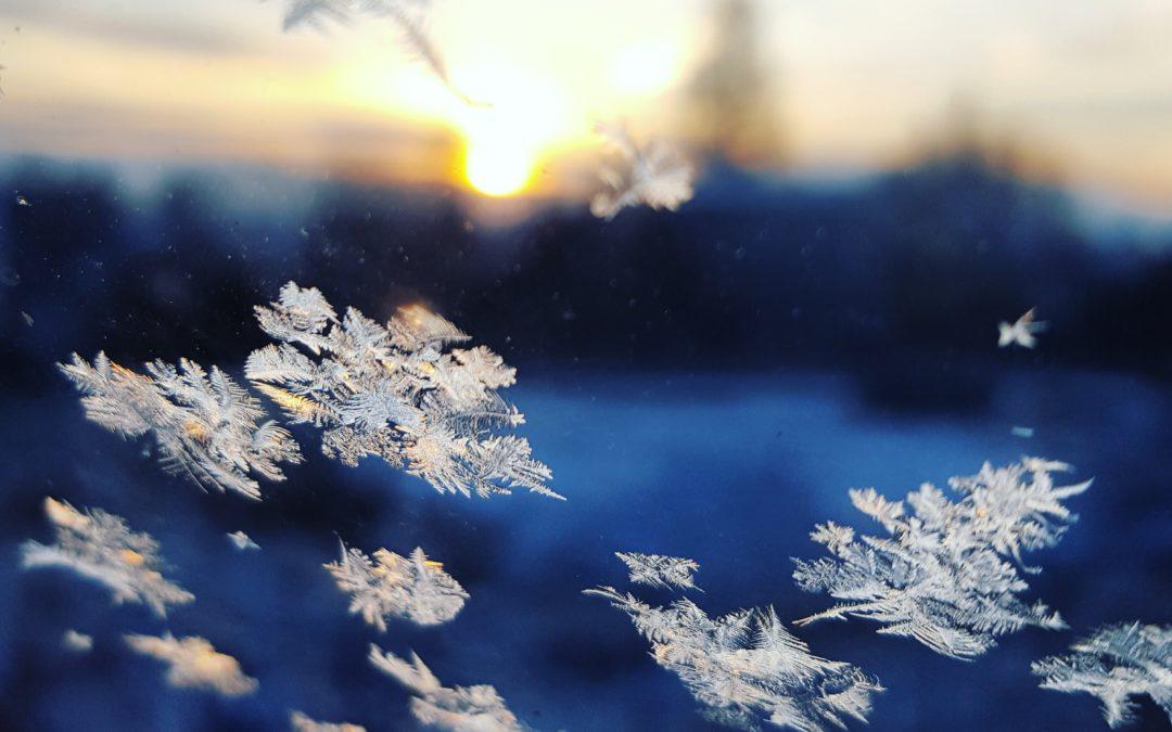 Die vollkommene Vergänglichkeit einer Schneeflockenexistenz